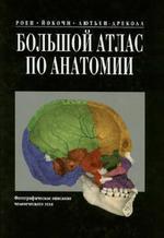 Большой атлас по части анатомии - Фотографическое обрисовка человеческого тела - Роен Й.В., Йокочи Ч., Лютьен-Дреколл Э.