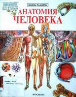 Анатомия человека - Маркуша Крокер