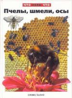 Пчелы, шмели, осы, Короткова О., 2001