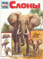 Слоны, Ульрих Зедлаг, 1995