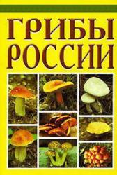 Грибы - Бескоровайный А.
