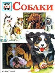 Что есть что, Собаки, Тайхман П., 1994