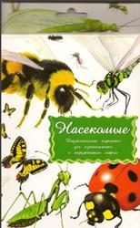 Насекомые, Дидактические карточки, 2008