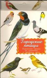 Городские птицы, Дидактические карточки
