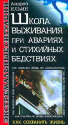 Школа выживания при авариях и стихийных бедствиях - Ильин А.А.