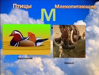 Презентация - Зоологический алфавит