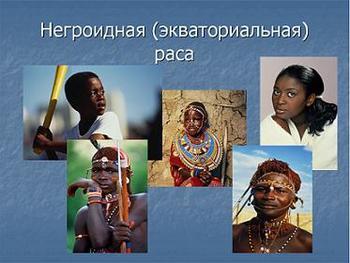 Презентация по биологии - Человеческие рассы