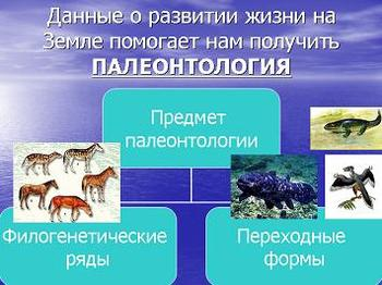 Презентация - Развитие жизни на Земле в архейскую и протерозойскую эры