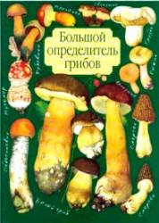 Большой определитель грибов, Юдин А.В., 2001