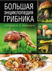 Большая энциклопедия грибника, Собираем и готовим, Поленов А.Б., 2014